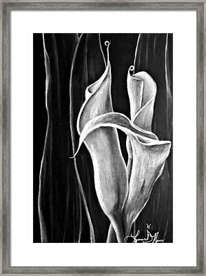 Callas Lilies Trio Framed Print
