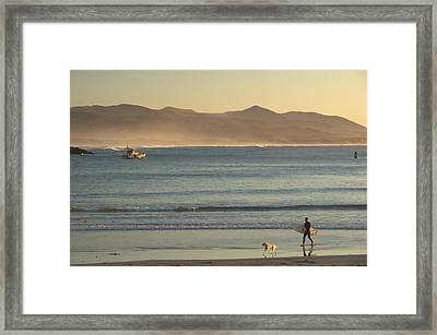 Framed Print featuring the photograph Callie Day.. by Al Swasey