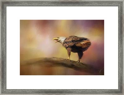Calling Spring Bald Eagle Art Framed Print by Jai Johnson