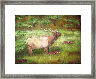 Calling The Herd Framed Print by Belinda Lawson