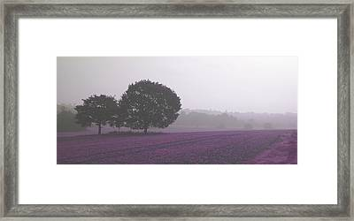 Calm Autumn Mist Framed Print
