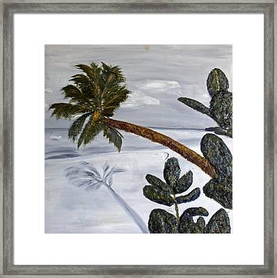 Calm Beach Palm Framed Print