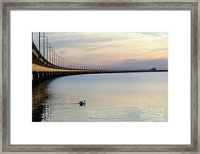 Calm Evening By The Bridge Framed Print