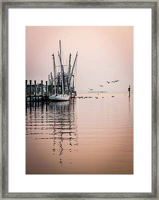 Calm Evening On Shem Creek Framed Print by Donnie Whitaker