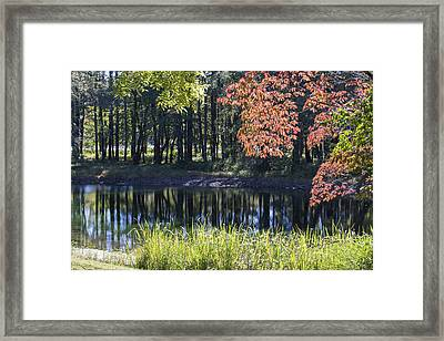 Calm Waters Framed Print by Ricky Dean