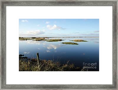 Calm Wetland Framed Print