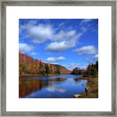 Calmness On Bald Mountain Pond Framed Print by David Patterson