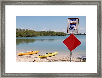 Calusa Blueway Framed Print by Steven Scott