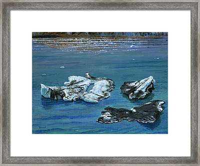 Calved Glaciers Alaska Framed Print by Vidyut Singhal