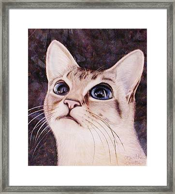 Framed Print featuring the painting Calvin The Cat by Martha Ayotte