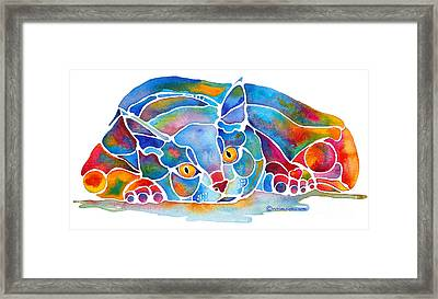 Calypso Cat Framed Print by Jo Lynch