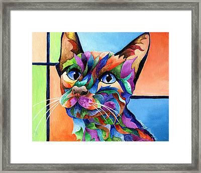 Calypso Framed Print by Sherry Shipley