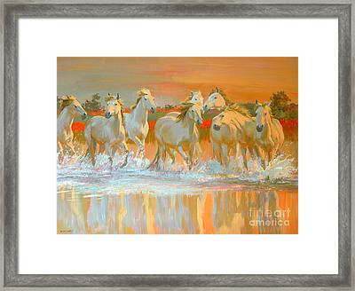 Camargue  Framed Print by William Ireland
