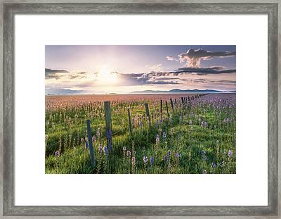 Camas Marsh 3 Framed Print by Leland D Howard