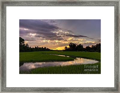 Cambodia Rice Fields Sunset Framed Print by Mike Reid