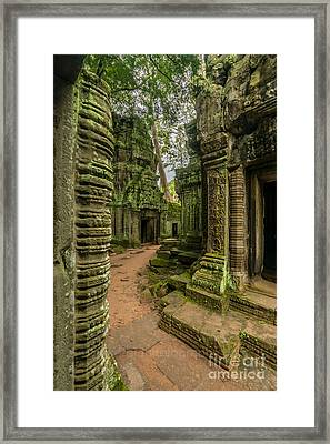 Cambodia Ta Phrom Ruins Framed Print by Mike Reid