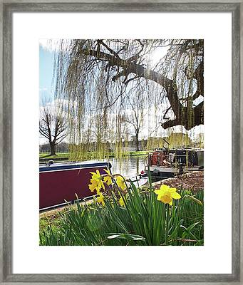 Framed Print featuring the photograph Cambridge Riverbank In Spring by Gill Billington