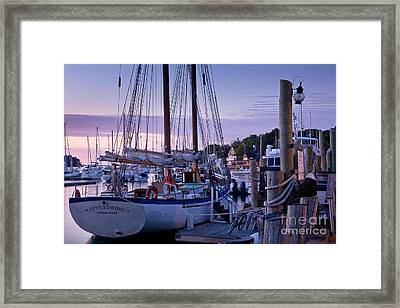 Camden Windjammer Dawn Framed Print by Susan Cole Kelly