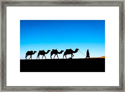 Camel Caravan On The Sahara Desert Framed Print by Andrii Vergeles