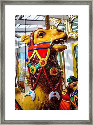 Camel Carrousel Ride Framed Print by Garry Gay