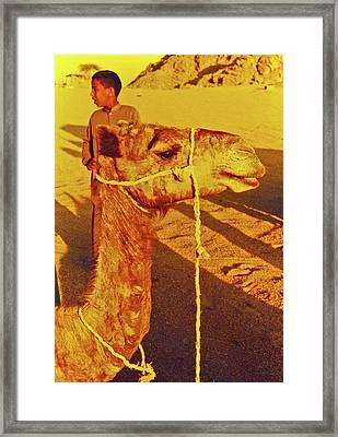 Camel Ride Framed Print by Elizabeth Hoskinson