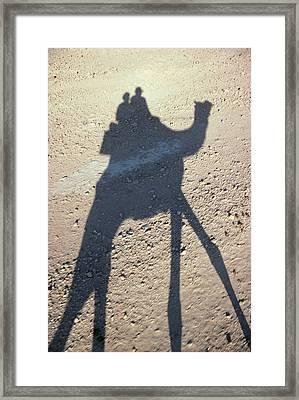 Camel Shadow Framed Print by Gloria & Richard Maschmeyer - Printscapes