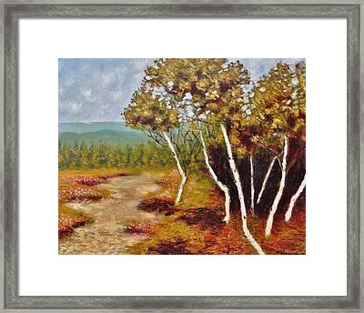 Camel Top Birches Framed Print by Jason Williamson
