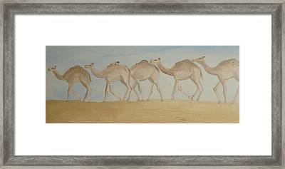 Camel Train Framed Print by Wendy Peat