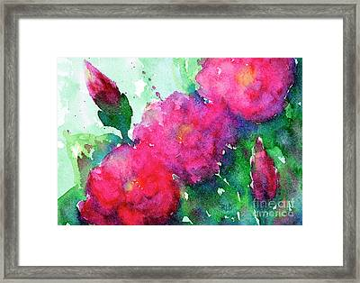 Camellia Abstract Framed Print