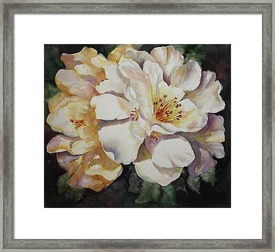 Camellias Golden Glow Framed Print by Roxanne Tobaison
