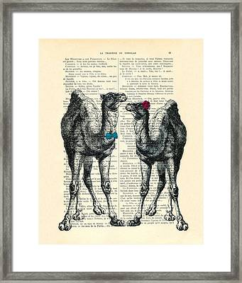 Camels Married Couple Framed Print by Madame Memento