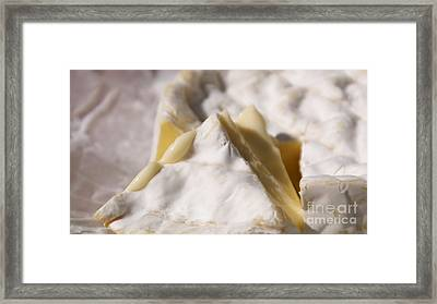Camembert Framed Print by Louise Fahy