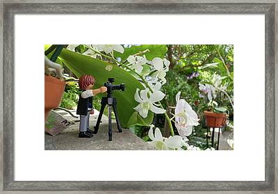 Camera People Come In All Sizes Framed Print by Liza Eckardt