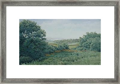 Camillus Field Framed Print by Stephen Bluto