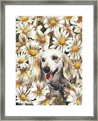 Framed Print featuring the drawing Camoflaged by Barbara Keith