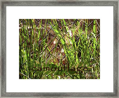 Camouflage Framed Print by Methune Hively