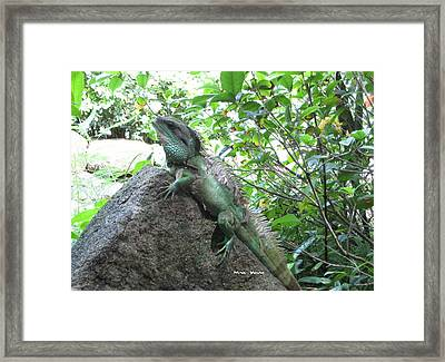 Camouflage Framed Print by Ming Yeung