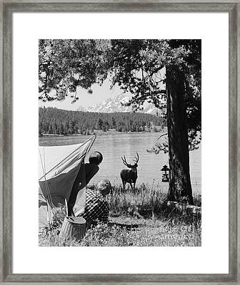 Campers And Deer, C.1960s Framed Print