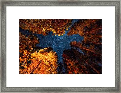 Camping Under The Stars  Framed Print