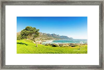 Camps Bay In Cape Town, South Africa Framed Print by Tim Hester