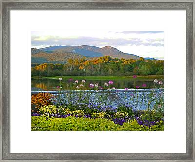 Campton Pond Campton New Hampshire Framed Print