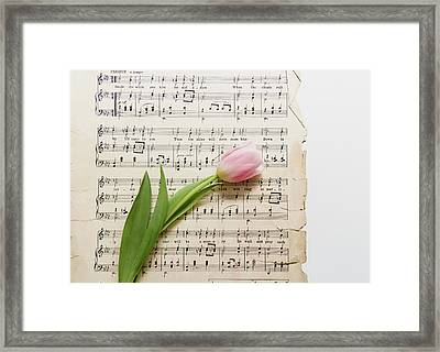 Framed Print featuring the photograph Can You by Kim Hojnacki