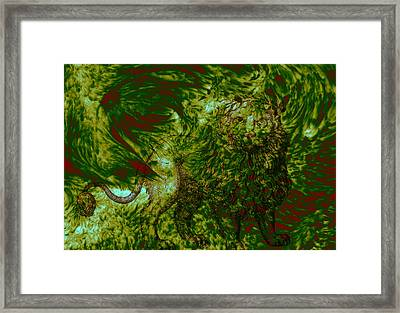 Can You See Me Framed Print by Evelyn Patrick