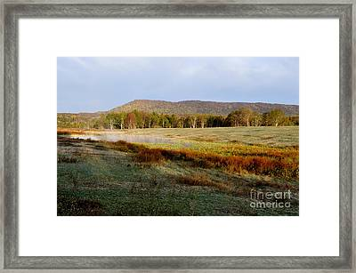 Canaan Valley State Park Framed Print by Thomas R Fletcher