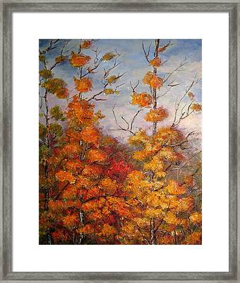 Canadian Autumn Framed Print