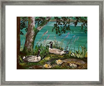 Canadian Geese At Nw Trek Framed Print by JR Hawse