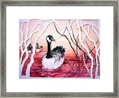 Canadian Geese Sunset Framed Print