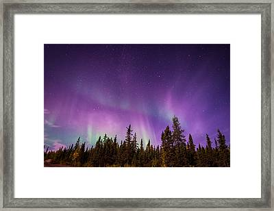 Canadian Northern Lights Framed Print