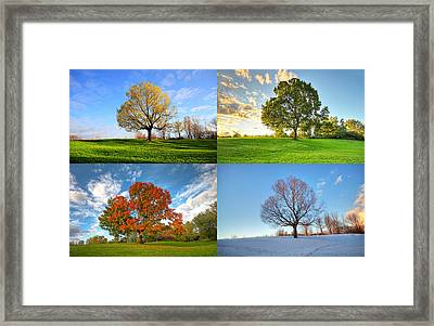 Canadian Seasons Framed Print