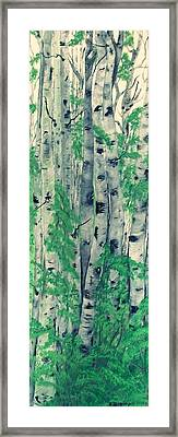 Framed Print featuring the painting Canadian White  Poplar by Sharon Duguay
